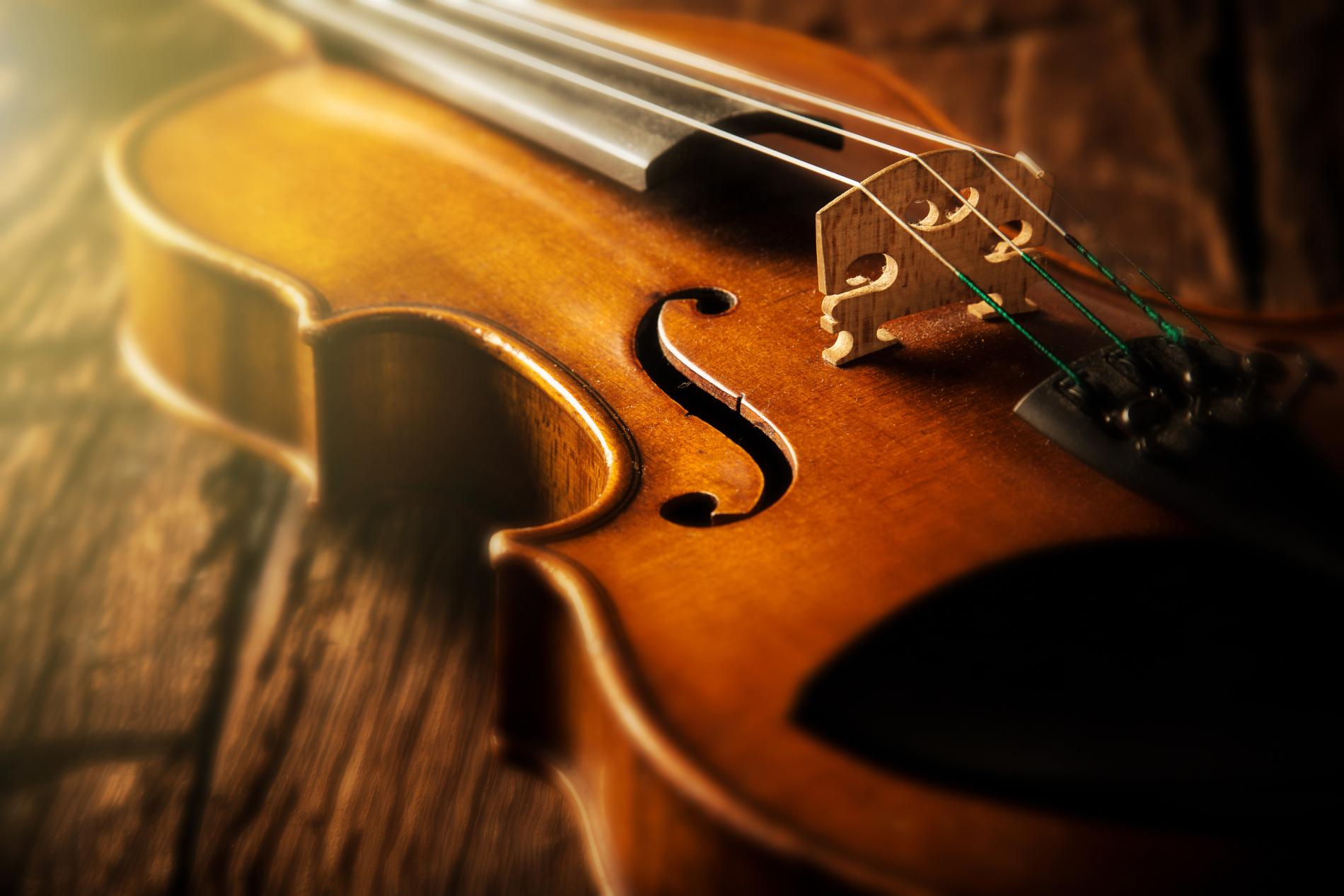 violin for sale Flocello musical string instruments Hamilton