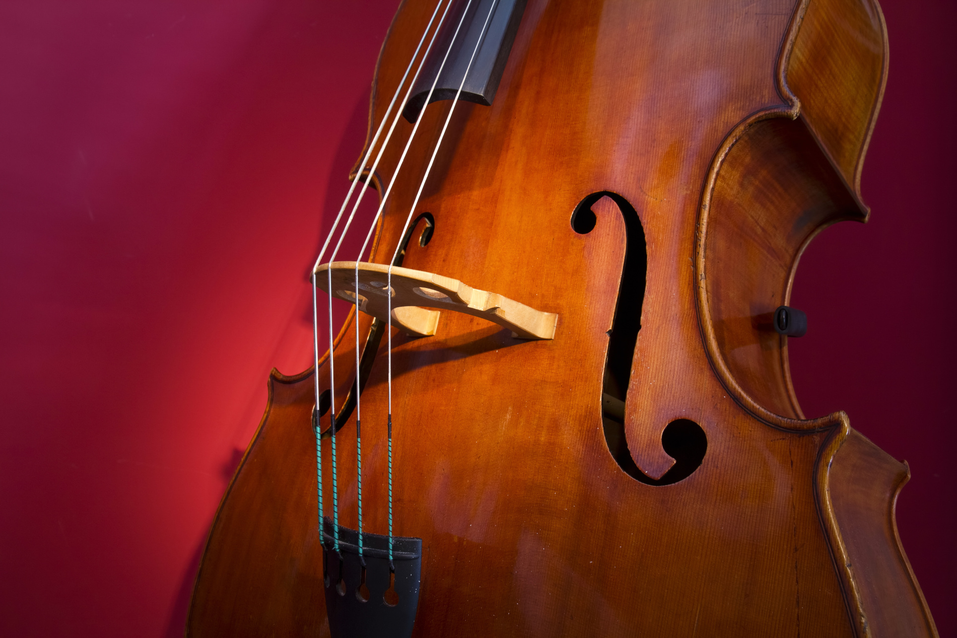 cello to buy or rent from Flocello store Hamilton