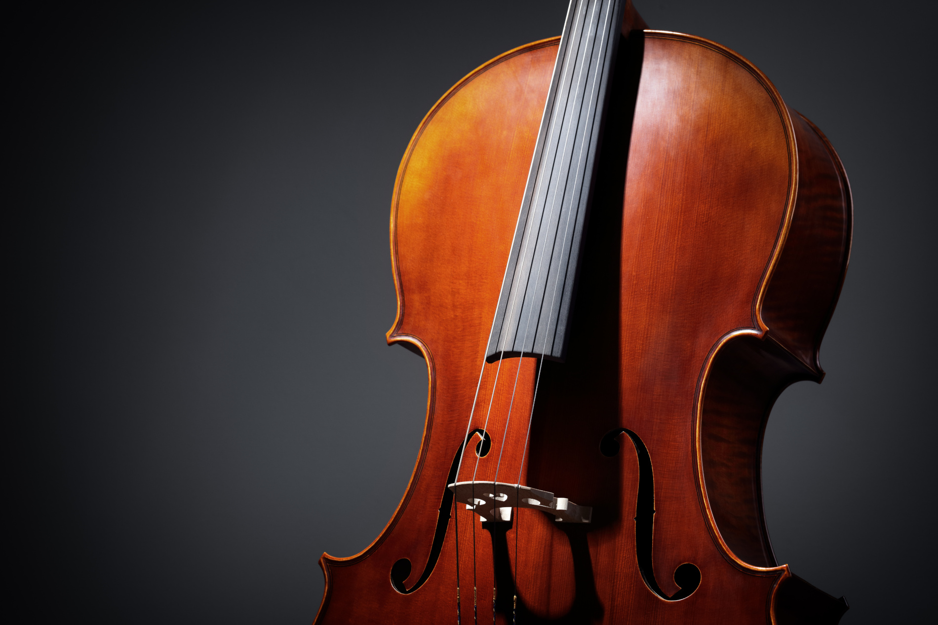 double bass for sale Flocello musical string instruments Hamilton