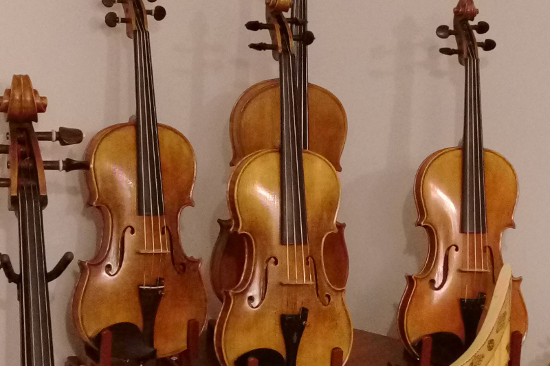 string quartet instruments flocello store hamilton