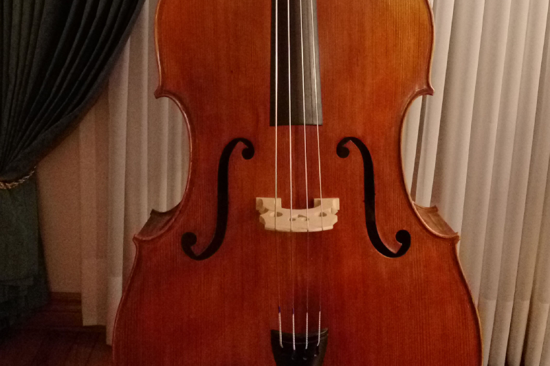 Student Quality Level Double Bass