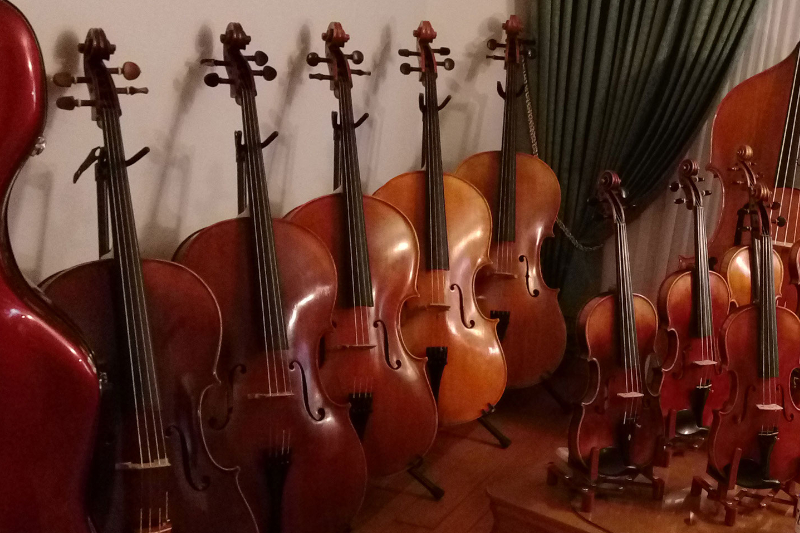 cello collection flocello store hamilton