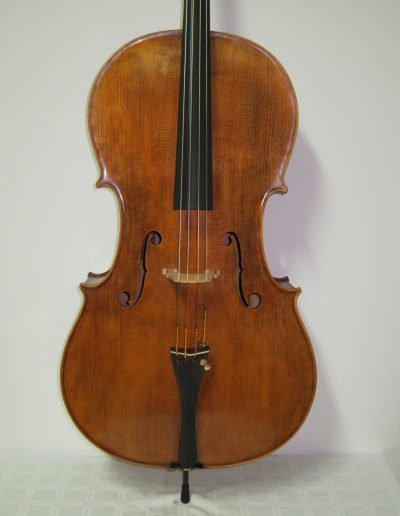Cello Amati Model 10