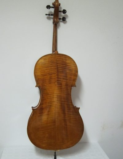 Cello Amati Model 11