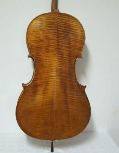 Cello Amati Model 12