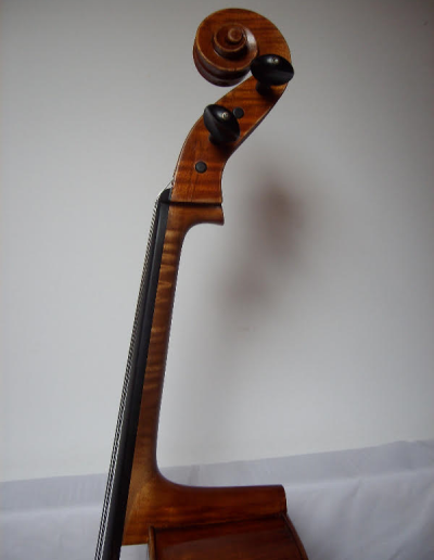 Cello Amati Model