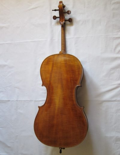 Cello Amati Model 6