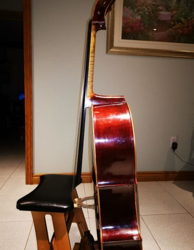 Cello Guarneri 1