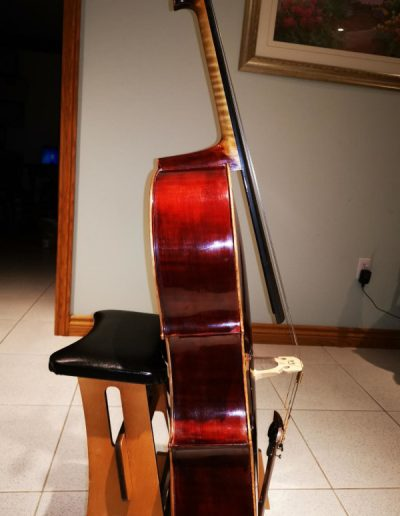 Cello Guarneri 2