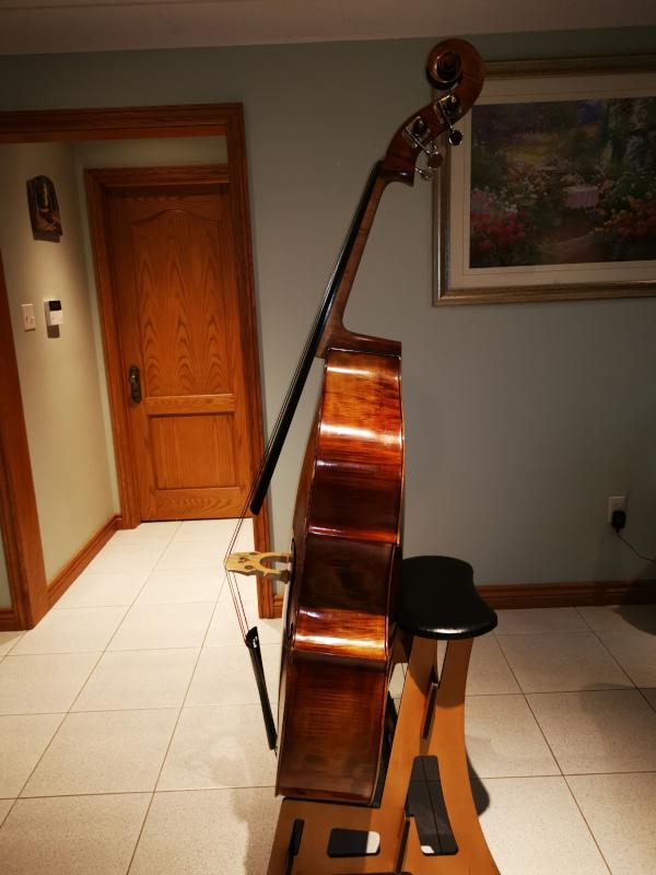 Professional And Maestro Level Doublebass Flocello Hamilton