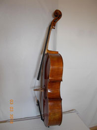 Montagnana Cello professional Flocello Hamilton