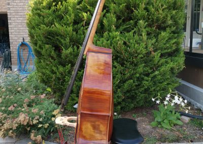 Cremona model Double bass 22