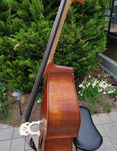 Double Bass, French model 11