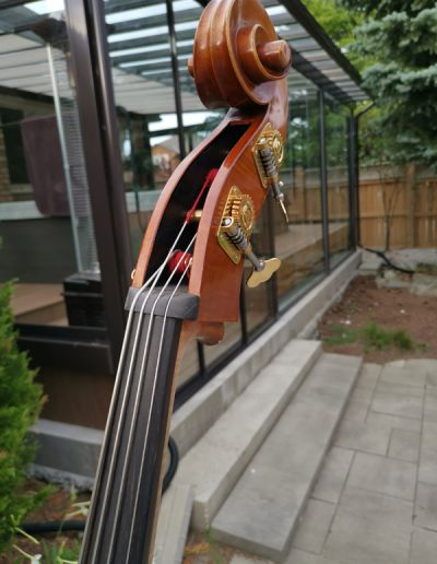 Double Bass, French model