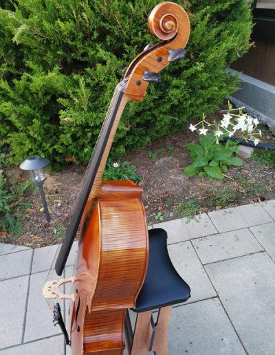 Professional and Maestro Level Cellos | FloCello Hamilton