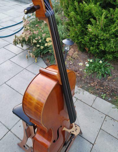 Stradivarius Greffuhle 11