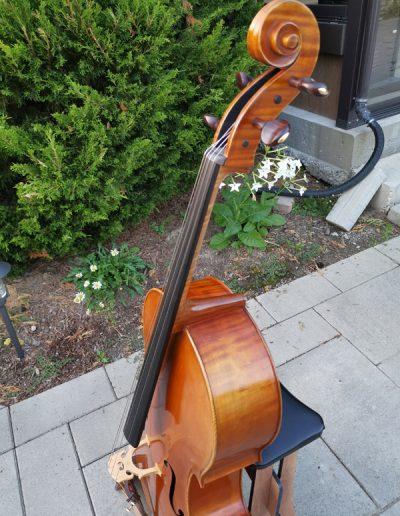 Stradivarius Greffuhle 14