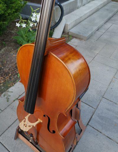 Stradivarius Greffuhle 15