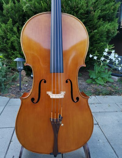 Stradivarius Greffuhle 4