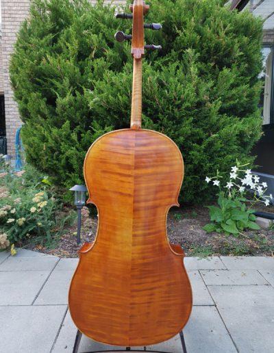 Stradivarius Greffuhle 5