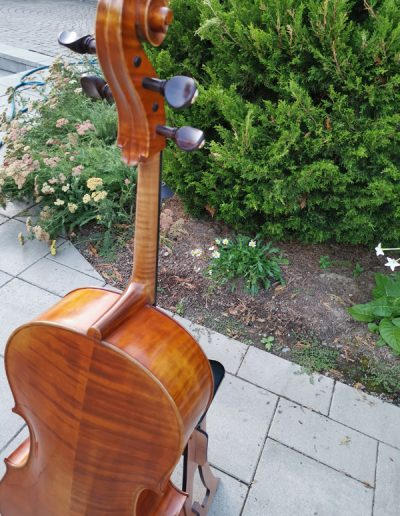 Stradivarius Greffuhle 7