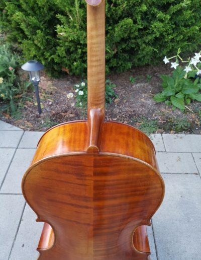 Stradivarius Greffuhle 8