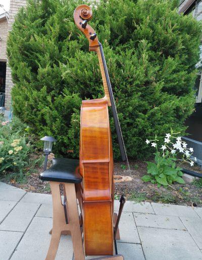 Stradivarius Greffuhle 9