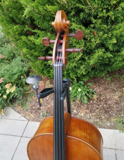 Amati 4 maestro level cello 1