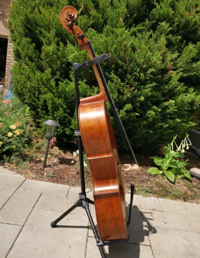 Amati 4 maestro level cello 11