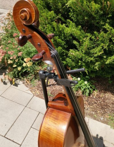 Amati 4 maestro level cello 12