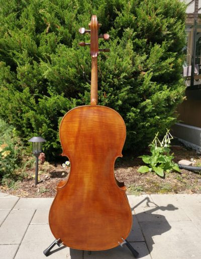 Amati 4 maestro level cello 4