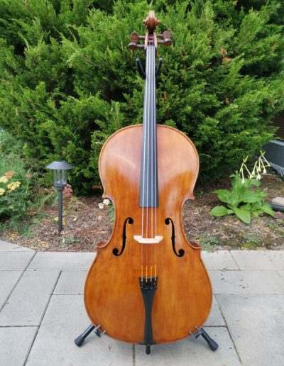 Amati 4 maestro level cello