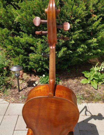 Amati 4 maestro level cello 5