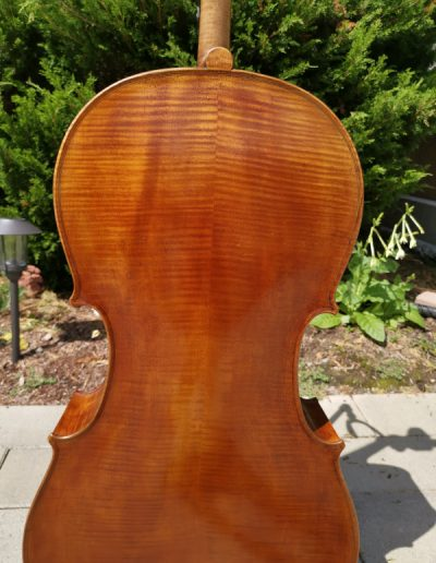 Amati 4 maestro level cello 6