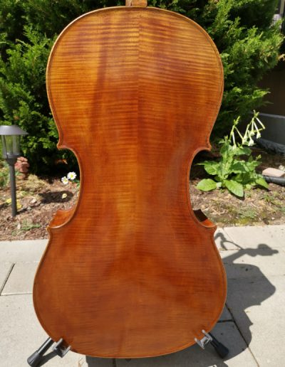 Amati 4 maestro level cello 7