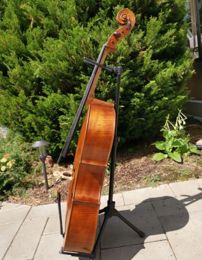 Amati 4 maestro level cello 8
