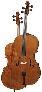 Professional level cello C300